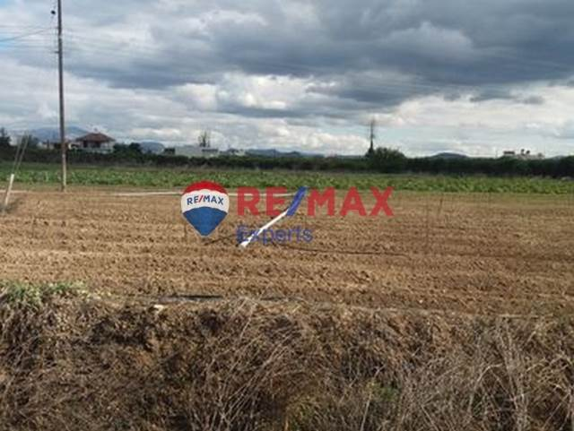 (For Sale) Land Plot || Argolida/Argos - 2.000 Sq.m, 80.000€